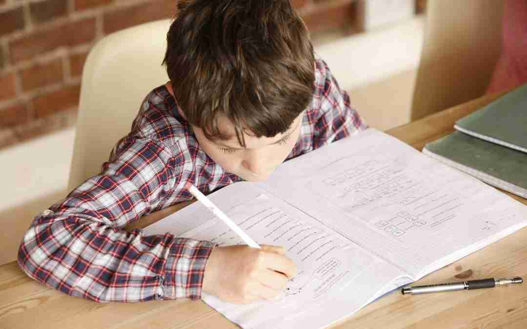 Managing summer revision